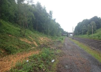 Wigan to Chorley De-vegetation